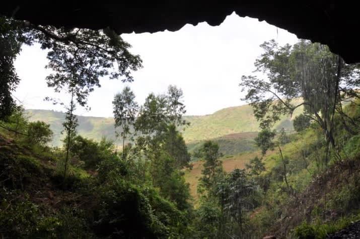 Näkymä luolan suuaukoista kumpuilevaan vihreään luontoon.