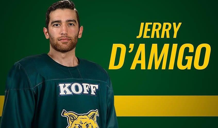 Jerry D'Amigo