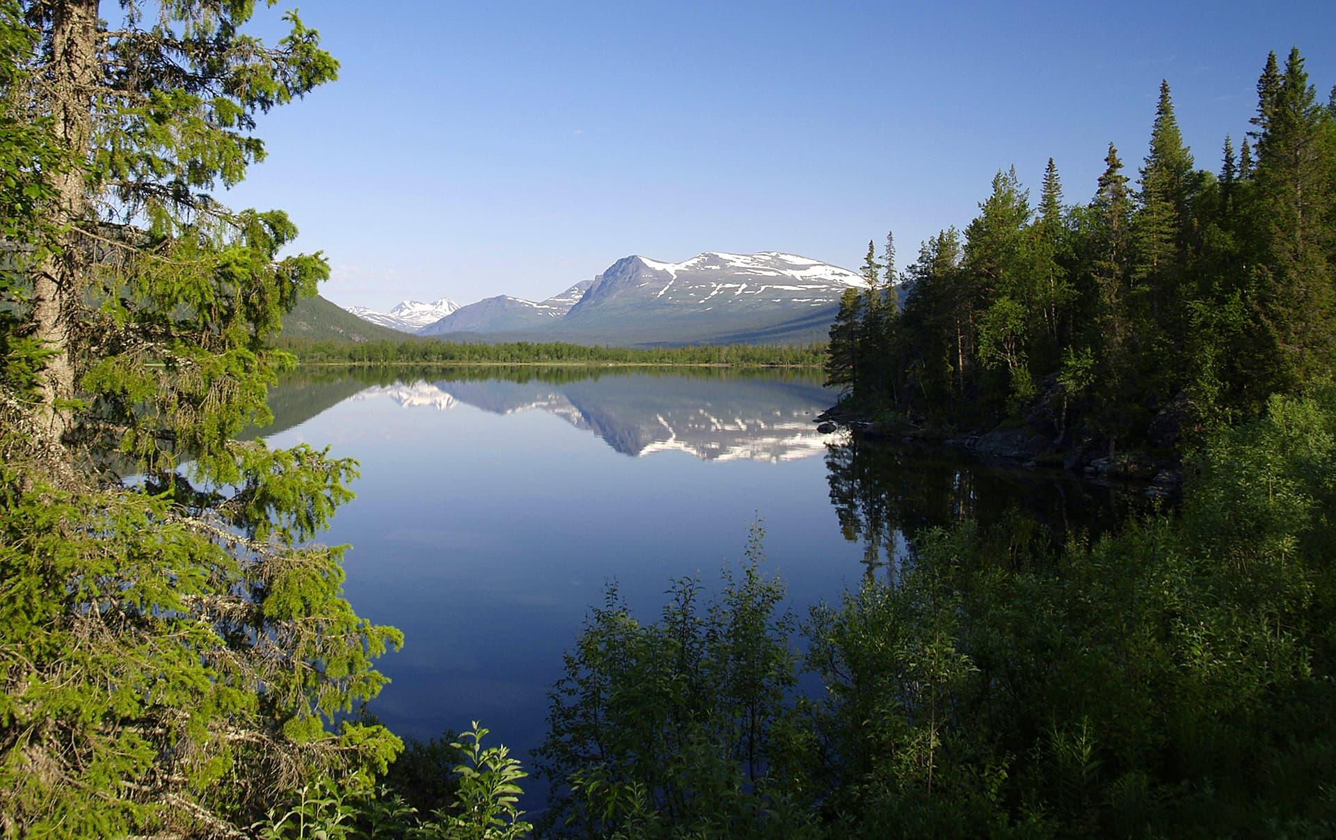 Storfjälletin luonnonpuisto