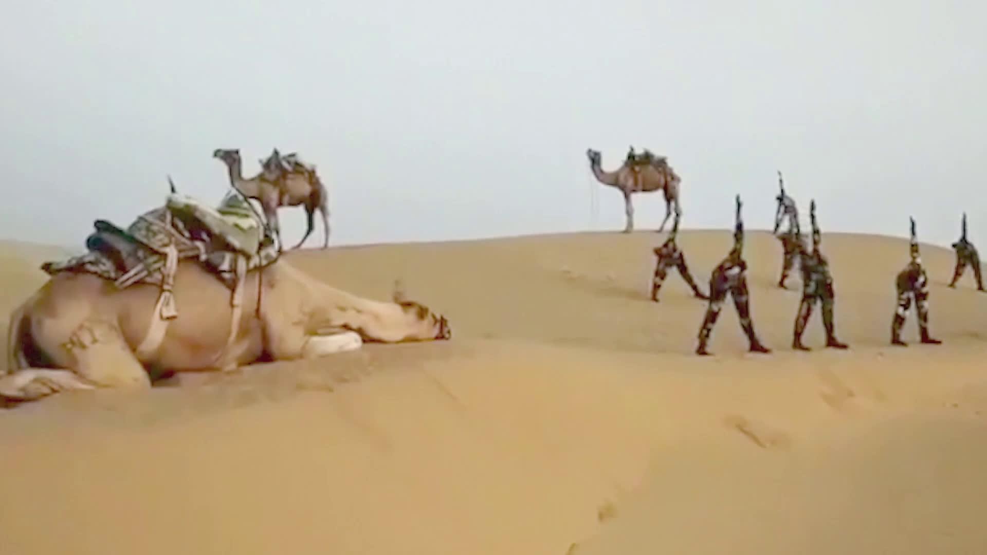 Intian rajavartiosto vietti kansainvälistä joogapäivää vuoristossa ja hiekka-aavikolla
