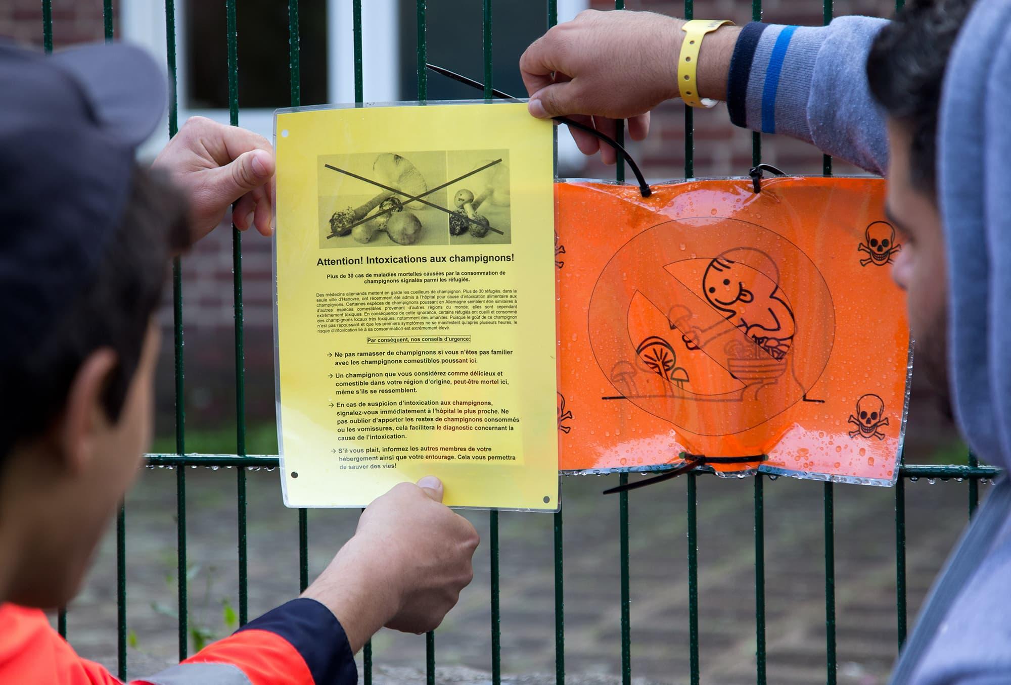 Erittäin myrkyllisistä kavalakärpässienistä varoittavaa kylttiä asetetaan aitaan Saksassa.