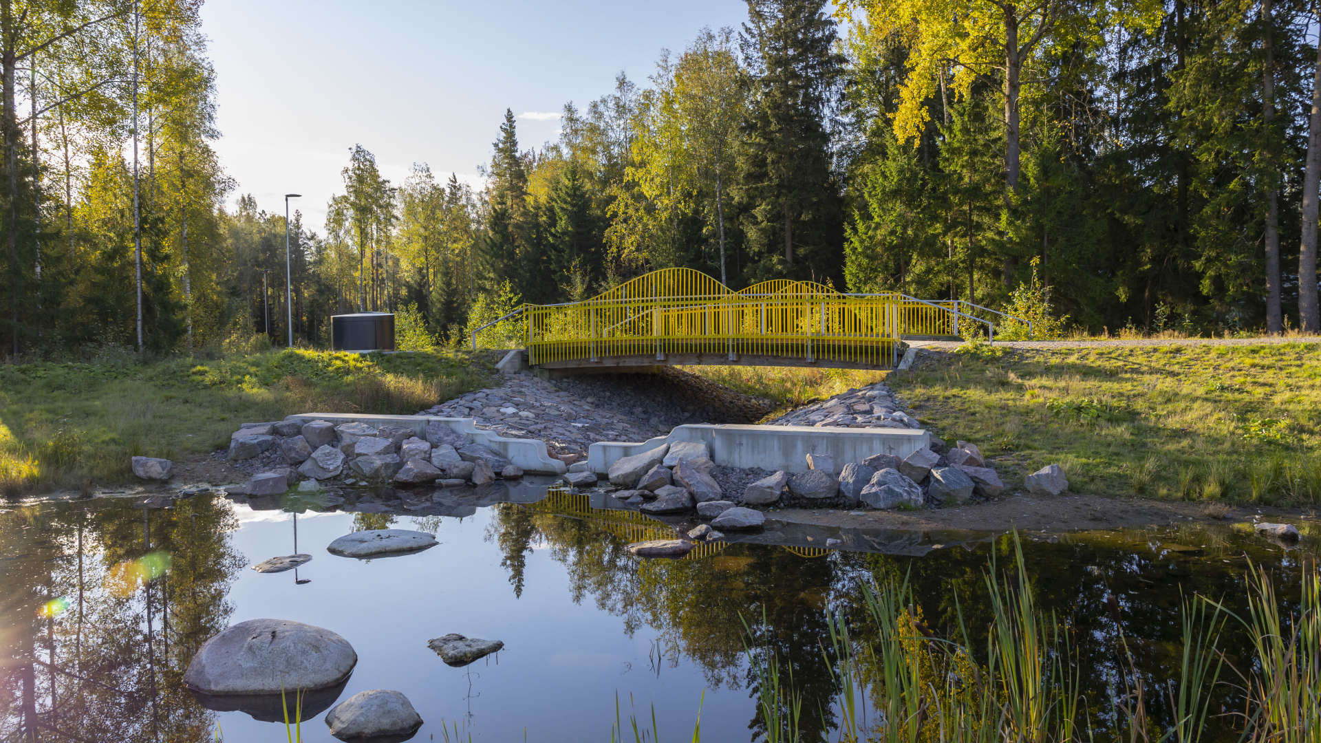 Tulvapuisto kerää sadevedet