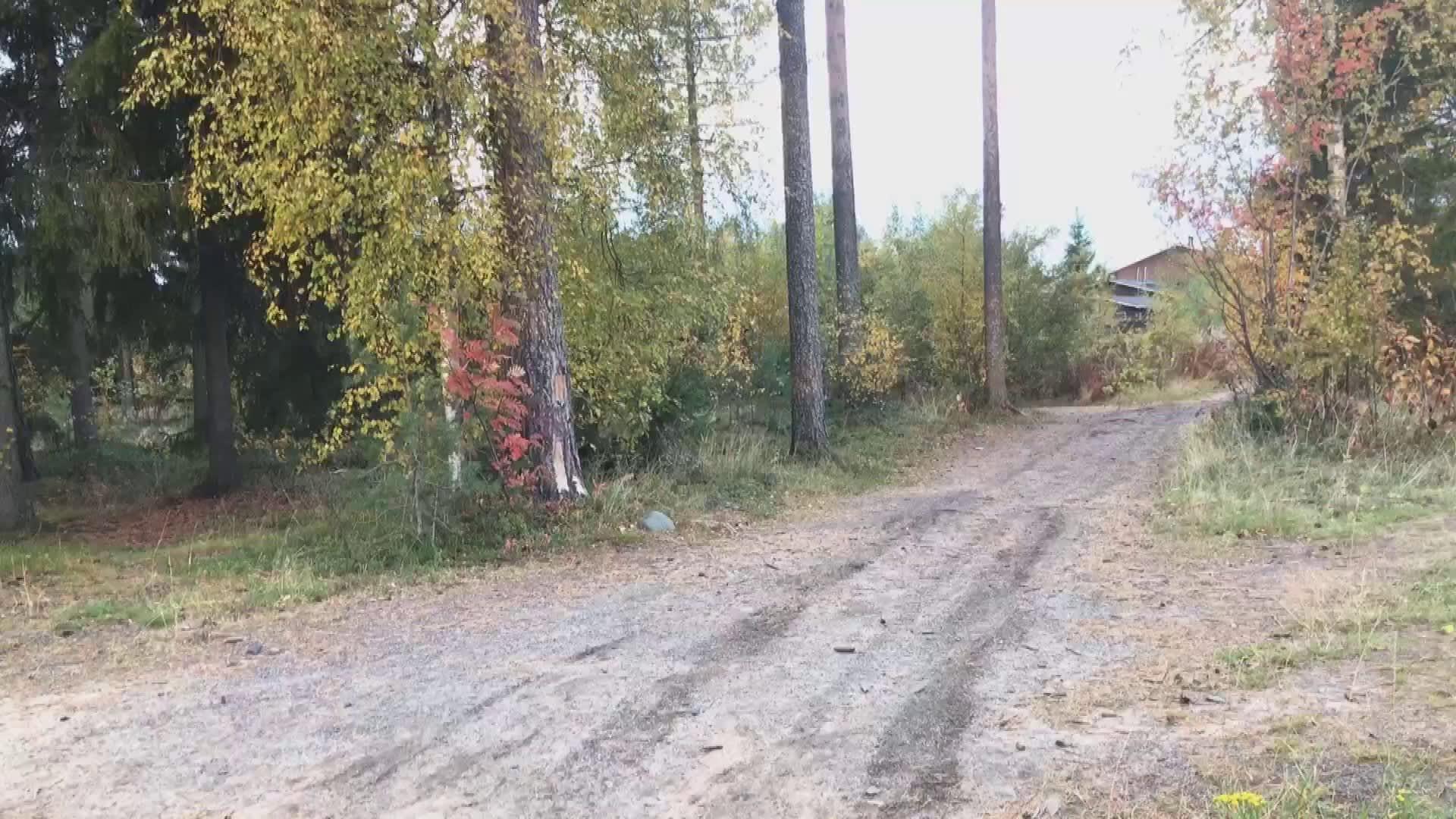 Länsituulen koulun seiskaluokkalaiset olivat siivoamassa koulun ympäristöä, kun osa oppilaista löysi maastosta polun vierestä käsiaseen.