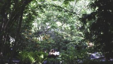 Puistonpenkillä kaksi rakastavaista