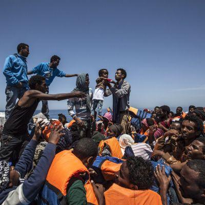 Kuvassa joukko siirtolaisia odottaa puuveneessä pelastusoperaation alkamista Sisilian edustalla, Italian vesillä. Toissa viikolla lähes 5 800 siirtolaista pelastettiin Välimereltä.