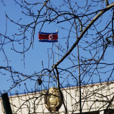 Pohjois-Korean lippu liehui Pohjois-Korean suurlähetystössä Pekingissä, Kiinassa keskiviikkona 6. tammikuuta.
