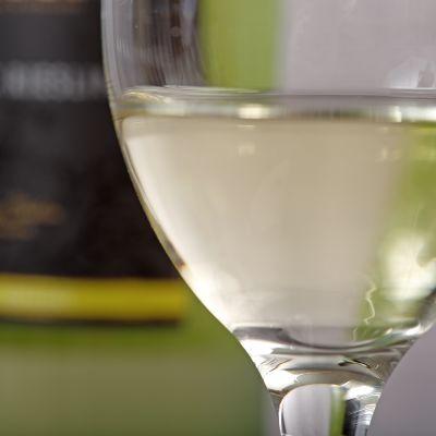 Valkoviiniä lasissa.