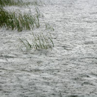 Vettä sataa aaltoilevaan järvenpintaan.