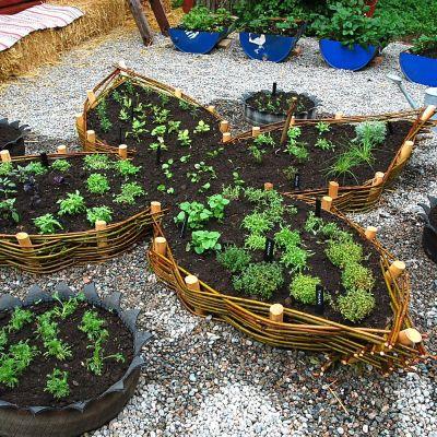 Blomliknande form på planteringsbäddar i Strömsös örtagård.