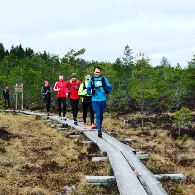 Juoksijoita pitkospuilla Torronsuon kansallispuistossa