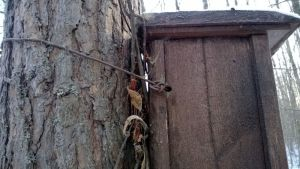 Fågelholk fäst med kabel