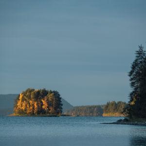 Saari järvimaisemassa syksyllä.