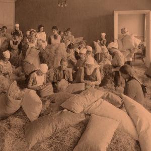 Helsinkiläiset naiset valmistamassa patjoja valkokaartilaisille ja erityisesti kirkkonummelaisille pojille, jotka olivat punaisten vankeina Ruotsalaisessa reaalilyseossa.