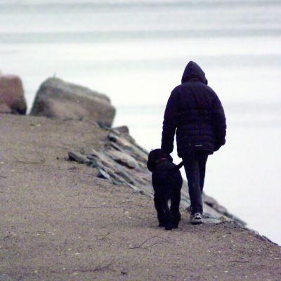 Människa på promenad med hund.