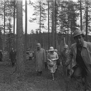 Käynti Haukanmaan metsätyökeskuksessa, Elisabet II seurueineen kävelemässä metsässä, Elisabetilla kypärä kädessä.