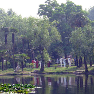 Taijin harrastajia puistossa