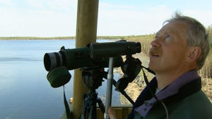 Jörgen Palmgren tarkkailee lintuja Otanmäen lintutornissa.