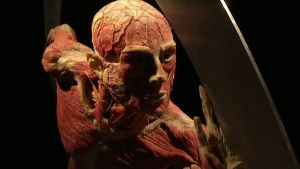 Kuva Gunther von Hagensin Body World -näyttelyn taideteoksesta.
