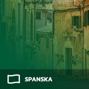 Abimix grafik för studentexamensproven i spanska