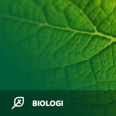 Abimix grafik för studentexamensproven i biologi