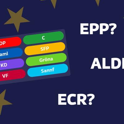 En lista med politiska partier i Finland och namn på flera olika politiska grupper i Europaparlamentet.