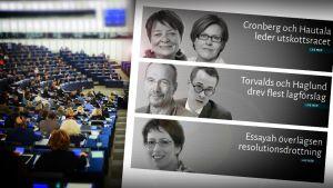Vem av våra europaparlamentariker har mest makt?