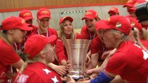 HIFKs guldlag 2014