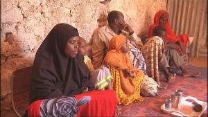 somaliska flyktingar som har flyttat tillbaka från jemen till somalia