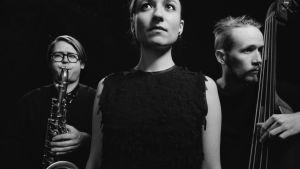 Lucia Cadotsch Trio