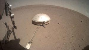 Laskeutuja Marsin pinnalla