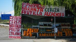 I Santiago finns det några olika öppna marknader där det säljs organisk mat.