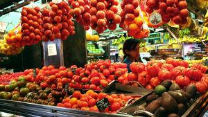 Tomaatteja hallin tiskissä.