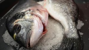 Dorada-kala suolapedissä