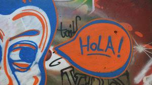 Hola-graffiti seinässä