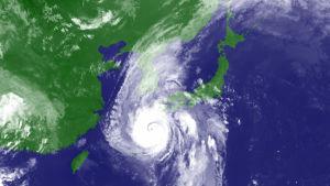 Tyfonen Haishen svepte över södra Japan och vände därefter norrut mot Sydkoreas näst största stad Busan.