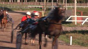 Hästsportcentret Vasa