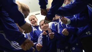 Damlandslaget i handboll inför VM-kvalet 2012