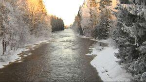 Vacker vintervy, strömmande vatten