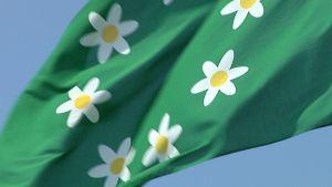 Raseborgs flagga