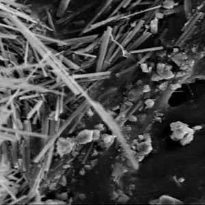 Asbestia mikroskoopista katsottuna.