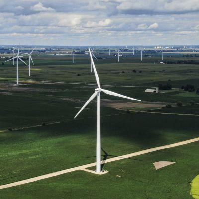 Tuulivoimaloita Illinoisin osavaltiossa.