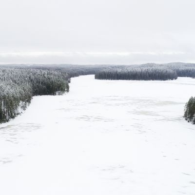 Pirkanmaan uusin kansallispuisto sijaitsee Kuhmoisissa