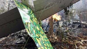 Det störtade planet brinner i Costa Ricas djungel.