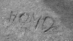 """Ordet """"Homo"""" skrivet i sand."""