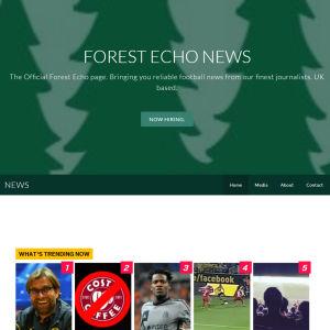 Kuvakaappaus Echo News sivustolta.