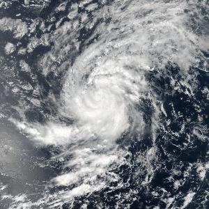 Irma har vuxit till kategori fyra, den näst högsta på orkanskalan