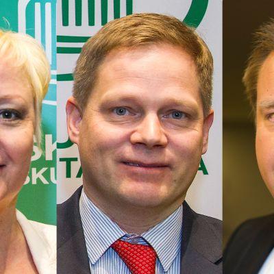 Elsi Katainen, Markus Lohi ja Antti Kaikkonen.