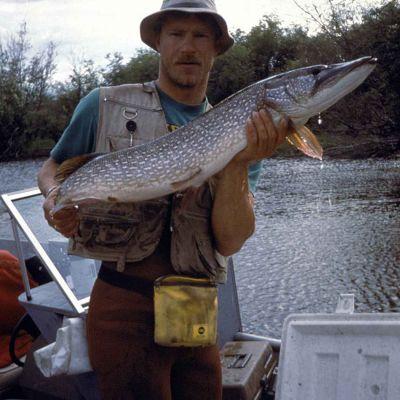 hauki kalastajan otteessa
