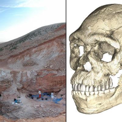 Homo sapiens-benrester upphittade i Marocko.