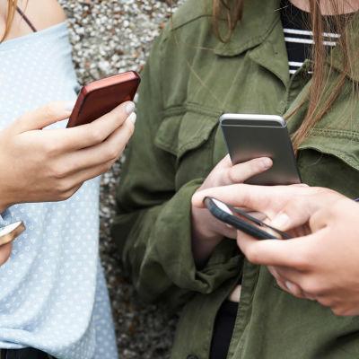 Ungdomar står och tittar på sina mobiltelefoner.
